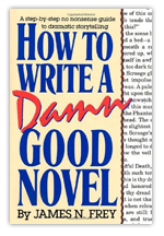 How to Write a Damn Good Novel - James Frey