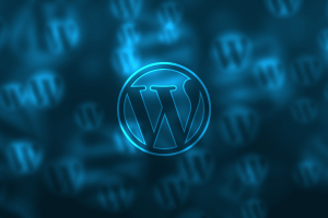 WordPress Hosting: A Brutally Honest Guide (to Save You Money)
