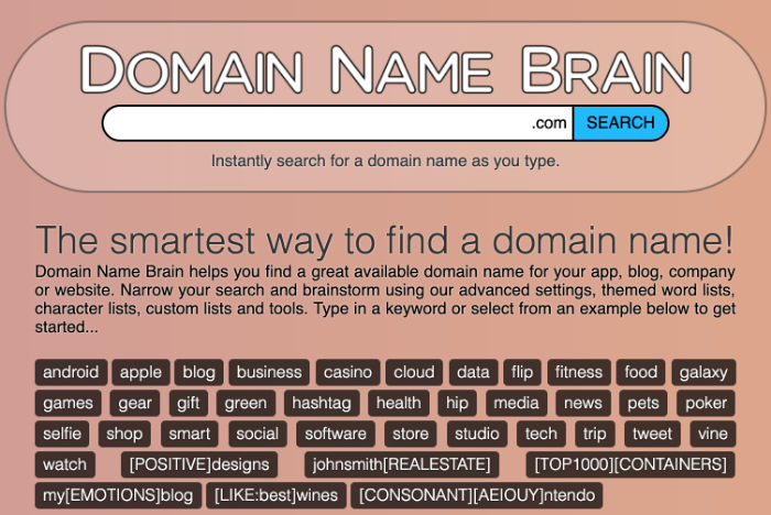 niche website domain name brain