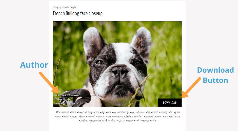 stock photo sites freestocks layout