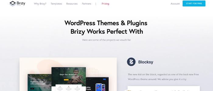 WordPress Page Builders Brizy Theme